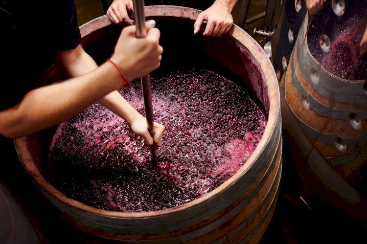 Что такое танины и танинное вино?#Aliantavin